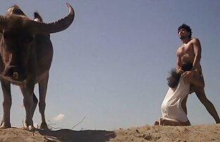 বন্ধুর মেয়ে, ইভা যৌন দৃশ্যের প্রেমমূলক ম্যাসেজ ফ্রি ভিডিও